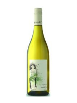 Innocent Bystander Pinot Gris Wine